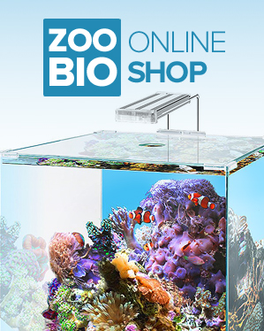 Aquariums Shop